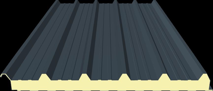 Dachpaneele, Sandwichpaneele 60mm für Dach,